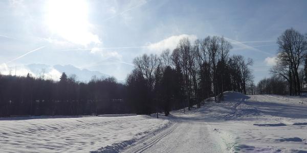 Sportplatzloipe mit Blick zum Kaisergebirge
