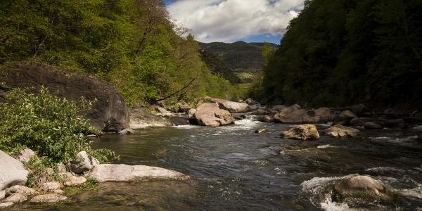 Il torrente Avisio tra Faver e Segonzano