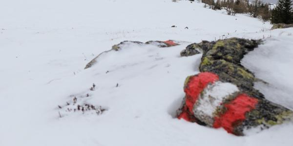 Nach einer Anhöhe ist es nur mehr ein kurzes Stück bis zum Gipfel.