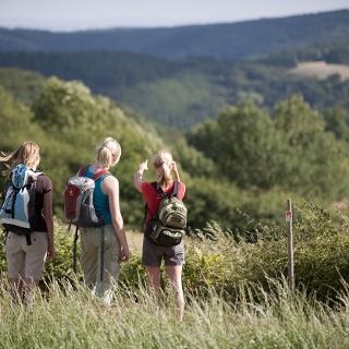 Waldseepfad Rieden Udelsheck Blick in die Eifel