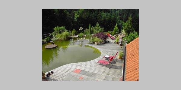 Pool Haufenhof Feldhüter