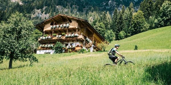 Biken im Alpbachtal