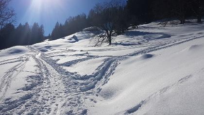 Winter vom Bilderbuch