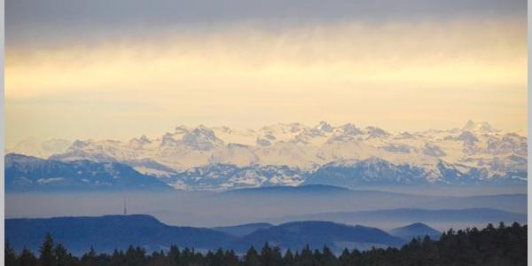 Dachsberg Alpensicht