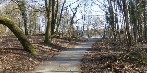 Havelradweg Richtung Nord bei Oranienburg