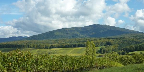 Blick auf das Vögisheimer Tal