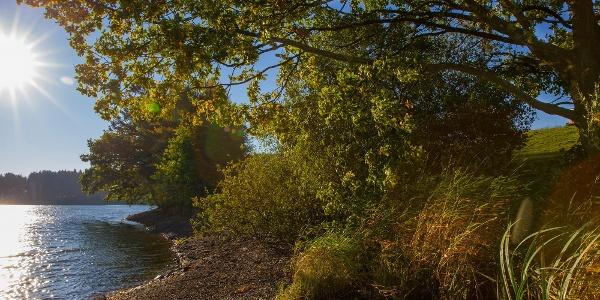 Wandern in Robertville - See von Robertville