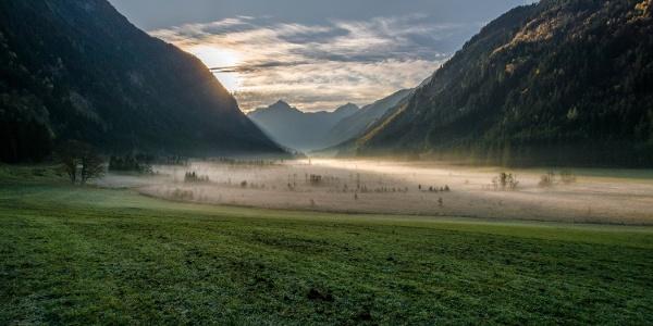 Blick auf das Tettermoor früh am Morgen