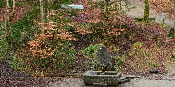 Glasbrunnen im Bremgartenwald.