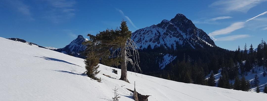 Aggenstein in den Tannheimer Bergen
