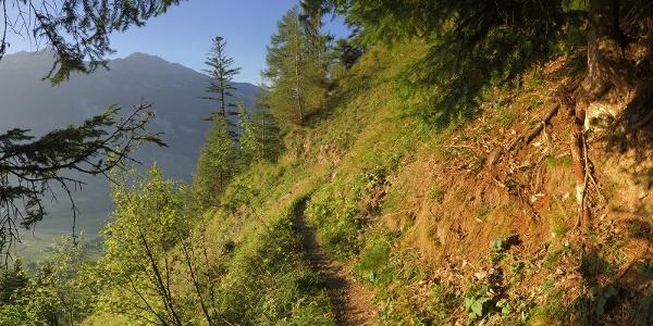 Wanderweg Sauerquelle
