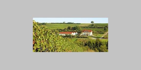 Straußwirtschaft im Weingut Zimmer-Mengel