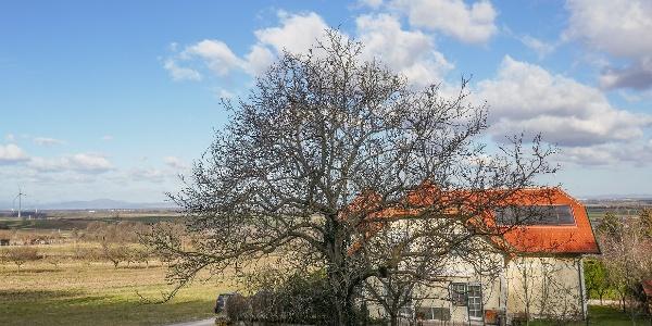 Start in Mannersdorf am Leithagebirge - Sicht bis zum Schneeberg