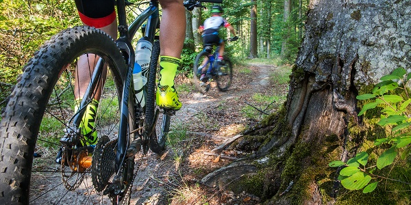 Mountainbike Arena Bad Säckingen