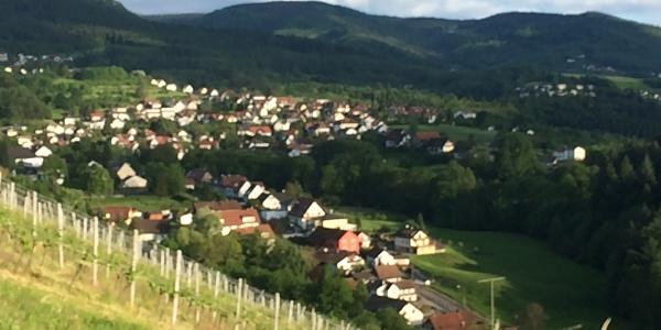 Blick in das Neusatzer Tal