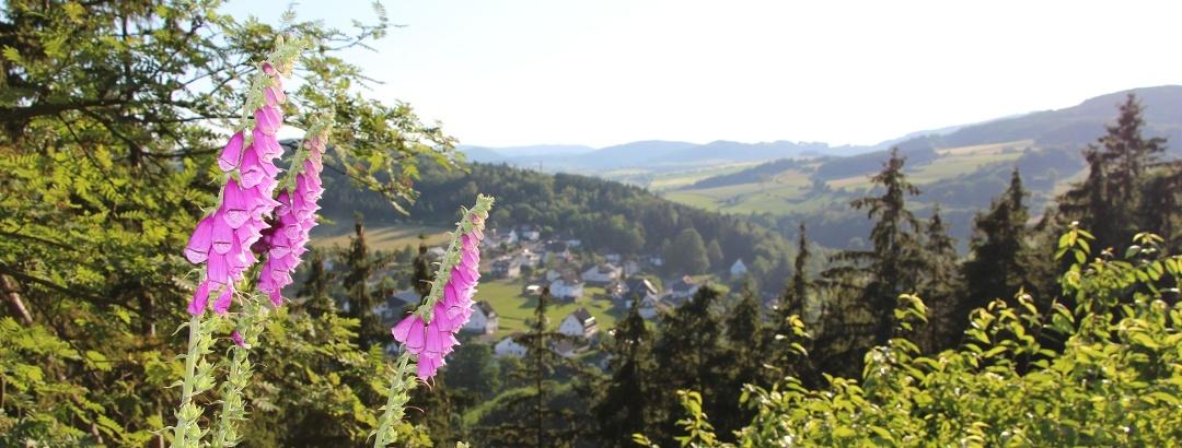 Blick vom Opolt in Dreislar
