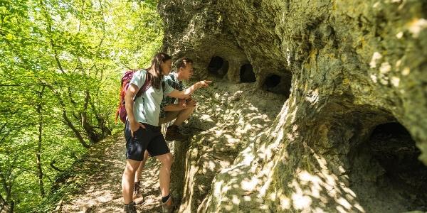 Blick in die Höhlen
