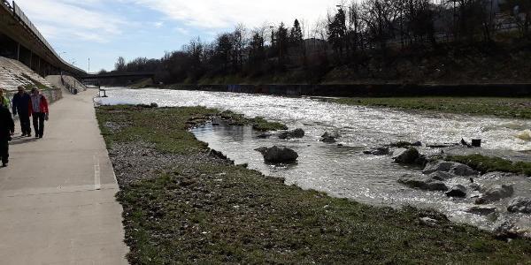 Wienfluss bei Hütteldorf