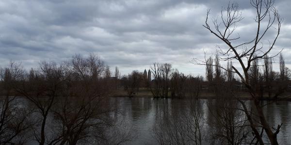 Dammweg in der Vogelau
