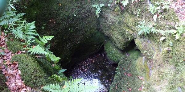 Historischer Brunnen an der Stadtwüstung Blankenrode