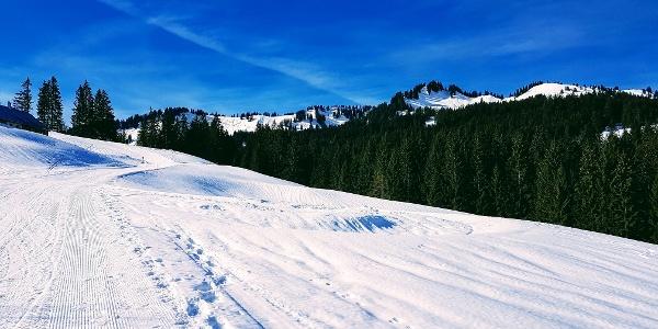 Winterwanderweg zur Burglhütte