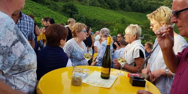 WeinwanderWochenende in Kirschroth