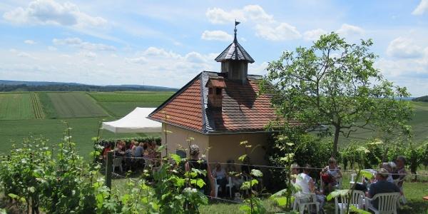 Weinwandern in Langenlonsheim