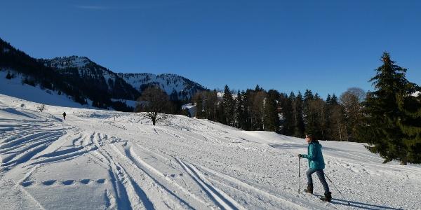 Skitourengeher auf der präparierten Aufstiegsroute zum Eineguntkopf