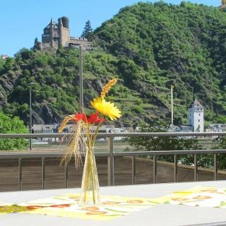 Ferienwohnung Burg Katz Aussicht