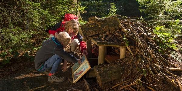Familie auf dem Märchenwanderweg. Lesen in einem Buch.