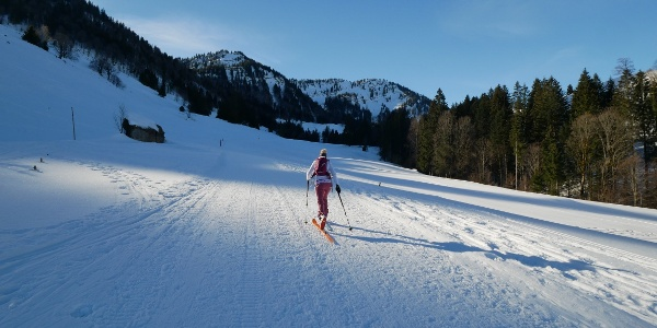 On skis up to the Seelekopf