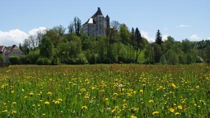 Das Hohe Schloss von Bad Grönenbach