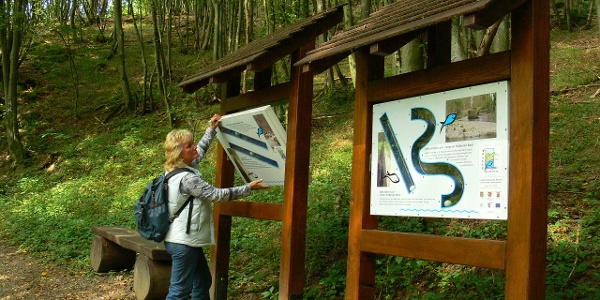 Wassererlebnispfad Hahnenbachtal