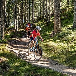 Hochalm Trail
