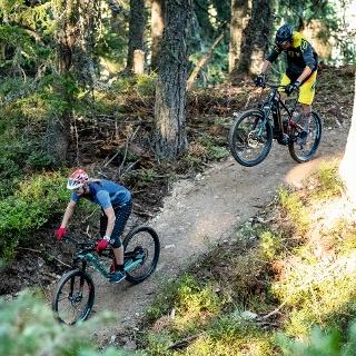 Schnepfenwald Trail