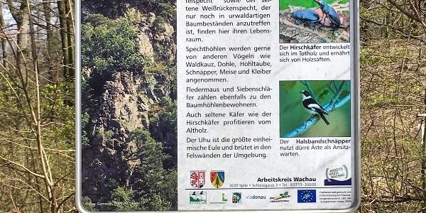 Informationstafel Lebensraum Waldtiere