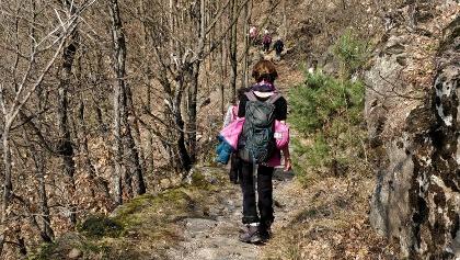 Abstieg zum Buschenschank Schluntner