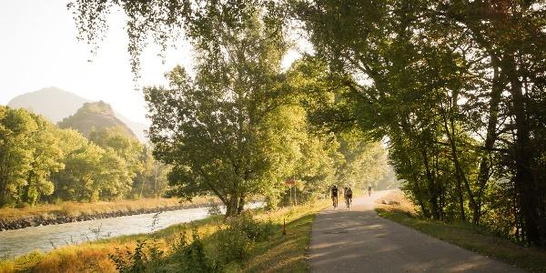 Radfahrer entlang des Rhône-Deiches im Schatten dank der Bäume