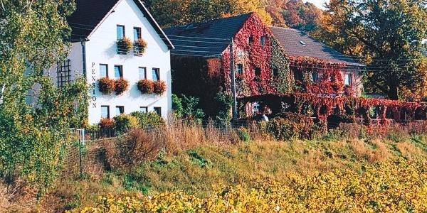 "Landgasthaus ""Am Talkenberger Hof"""