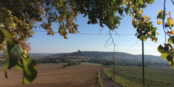 Blick zur Ronneburg