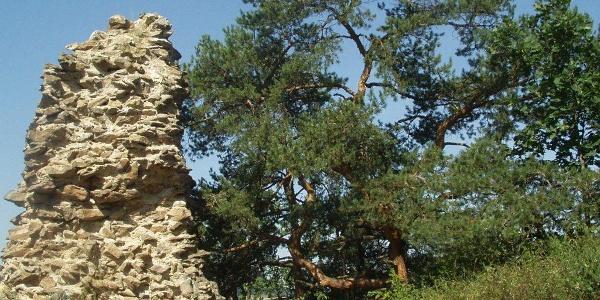 Ruine Buchenstein