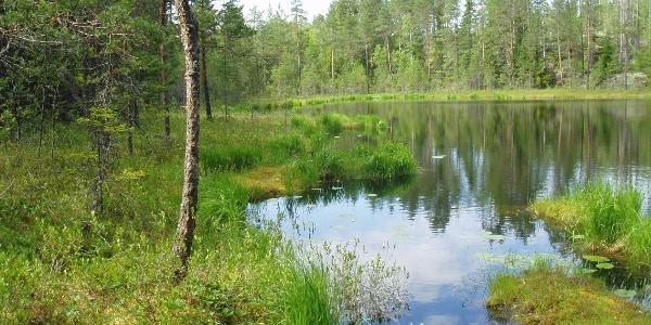 Rajojen reitti hiking trail, Ruokolahti