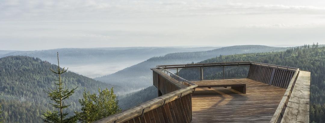 Aussichtsplattform am Ellbachseeblick