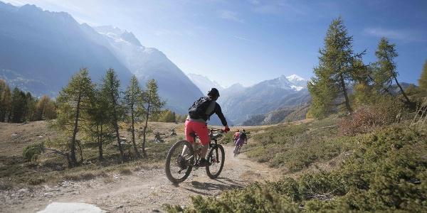 Descente de la Grächen Family Bike