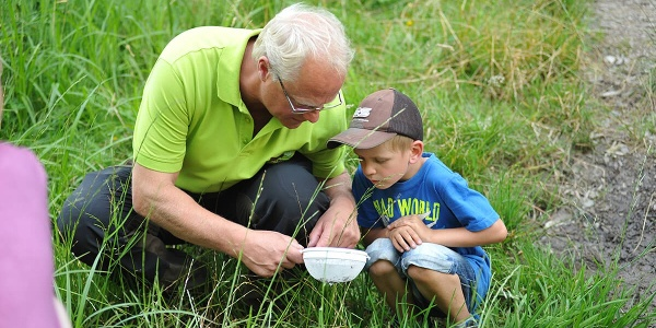 Wisent Wildnis Waldpädagogik 3