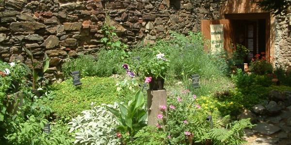Gyógynövénykert és Natúrbolt a várban