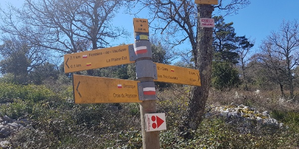Example of the yellow walker's signpost