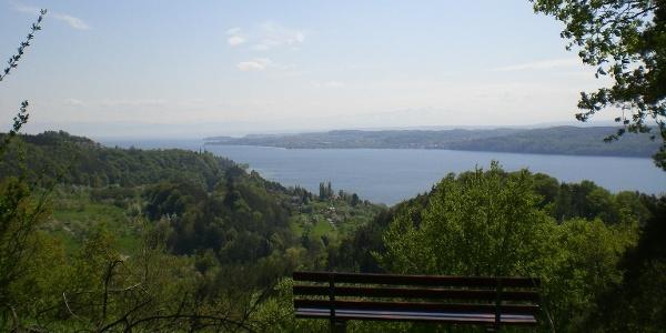 auf der Zimmerwiese mit Blick Richtung Obersee
