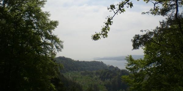 Blick Richtung Mainau