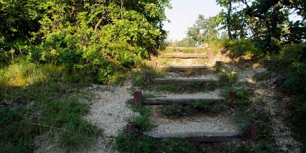 A Rupp-hegy csúcsára vezető lépcső